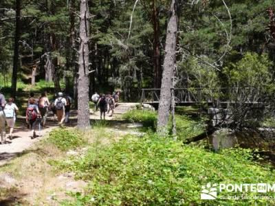 Las Pesquerías Reales - Senderismo Segovia (Ruta de las Pesquerías Reales); senderos gr